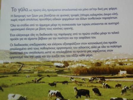 από το πληροφοριακό έντυπο του Τυροκομείου Μυκόνου... οι αγελάδες στη Μαού της Άνω Μεράς